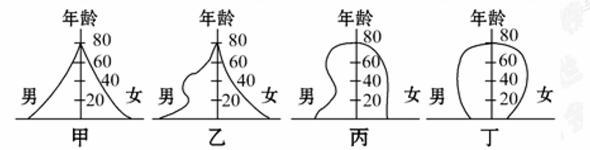 丁四国人口金字塔示意图