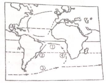 读大西洋洋流分布图,回答下列问题