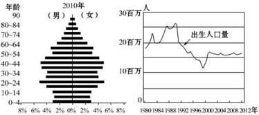 人口金字塔_2010 人口金字塔